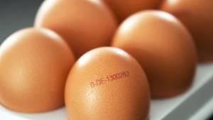 Heidegold Salmonellen Eier