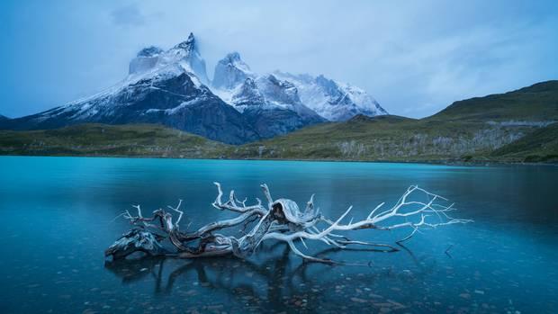 Lago Nordenskjöld in Patagonien