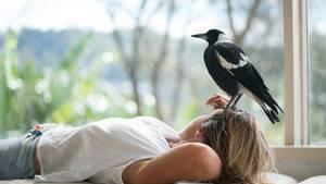 Die beiden verband eine tiefe Freundschaft. Und die querschnittsgelähmte Sam schöpfte wieder Lebensmut. Der Vogel holte die 45-Jährige aus ihrer Depression.