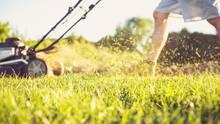 Akku-Rasenmäher sind eine praktische Alternative zu Mäher mit Kabeln, aber sie haben deutlich weniger Power und sind sehr viel teurer.