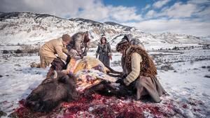 Ein Büffel wird gehäutet und ausgeweidet