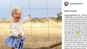 Die zweijährige Molly posiert für ein Foto vor einem Zaun