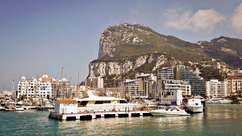 Gibraltar Affenfelsen