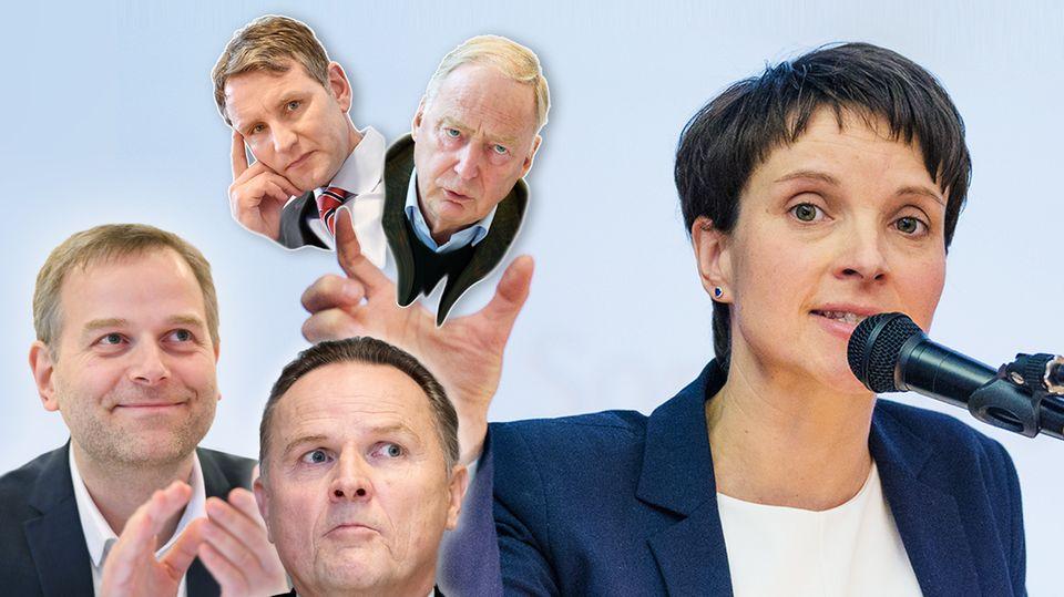 AfD-Politiker Frauke Petry, Björn Höcke, Alexander Gauland, Leif-Erik Holm und Georg Pazderski