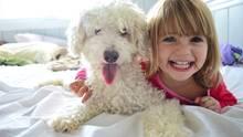 Beste Freunde - viele Kinder wünschen sich einen eigenen Hund.