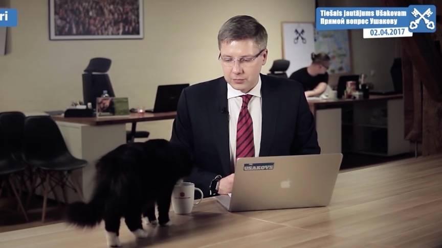 Tierischer Zwischenfall: Katze unterbricht die öffentliche Fragestunde eines Bürgermeisters