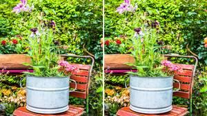 Links sehen Sie das Original, rechts haben wir sechs Fehler versteckt. Um das Bild zu vergrößern, klicken Sie bitte auf das Zoomsymbol unten rechts auf dem Bild.
