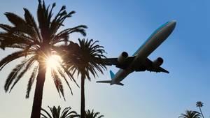 Günstige Flüge finden