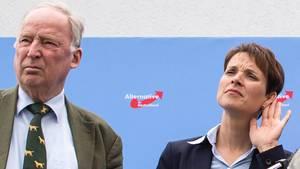 Damals herrschte zwischen den beiden noch Frieden: Alexander Gauland und Frauke Petrybei einer Pressekonferenz auf der Dachterrasse der AfD-Parteizentrale in Berlin.