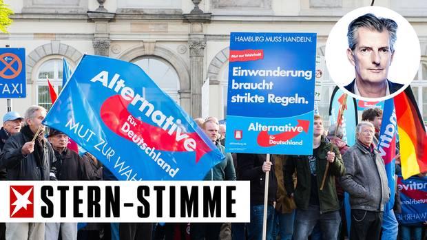 Anhänger der AfD bei einer Kundgebung in Hamburg im Jahr 2015 (Archivbild)