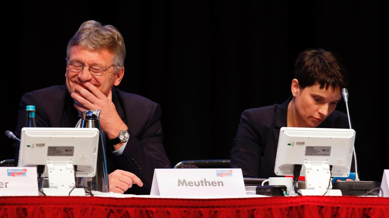 Jörg Meuthen und Frauke Petry