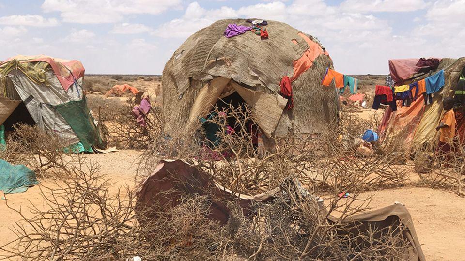 Die Hütten der nomadischen Familien im Dorf Uskura sind aus Ästen, Planen und Decken gebaut