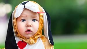 Kleines, süßes Kind im Hundekostüm
