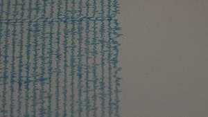 Besonders stark schlug der Seismograph nicht als, als in der Nacht zu Samstag in der Region Leipzig-Halle die Erde bebte (Symbolbild).
