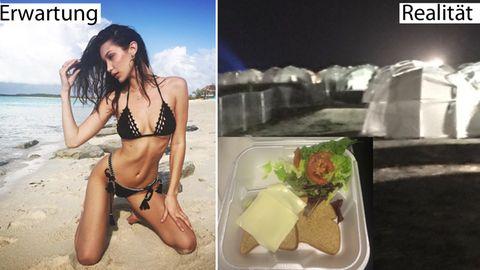 Fyre Festival auf den Bahamas: Streunende Hunde statt Supermodels: Luxus-Festival endet im totalen Chaos