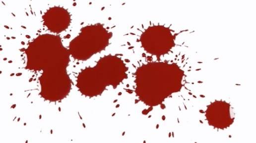 NEON Unnützes Wissen: Können Mücken betrunken werden? - zehn kuriose Fakten zu Blut