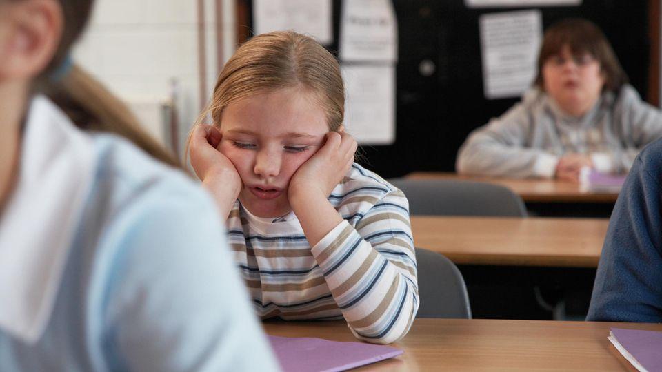 Schlafen hat großen Einfluss auf unsere Lernfähigkeit