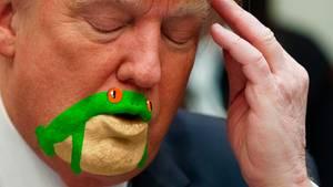 Donals Trump mit Frosch im Gesicht