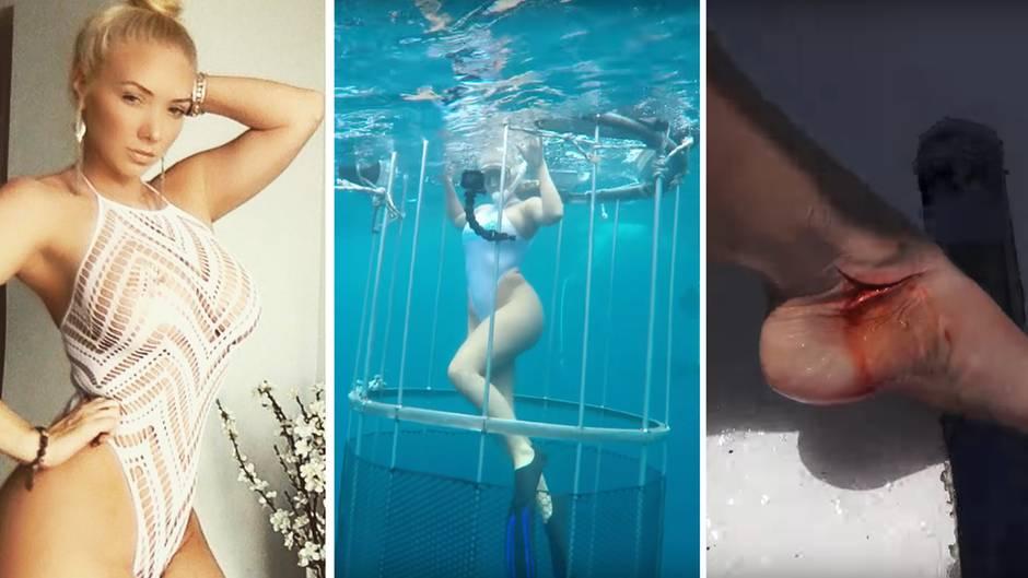 Beim Unterwasser-Shooting Video: Hai beißt Porno-Sternchen Molly Cavalli