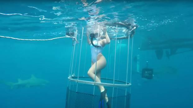 Molly im Wasser - die Kameramänner schwimmen übrigens ohne Schutz.