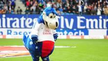 """HSV Maskottchen """"Dino Hermann"""""""