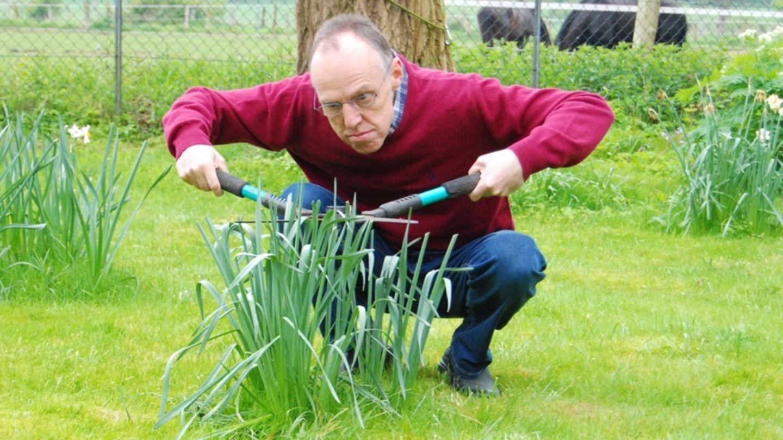 stern-Autor Kester Schlenz kämpft mit Heckenschere