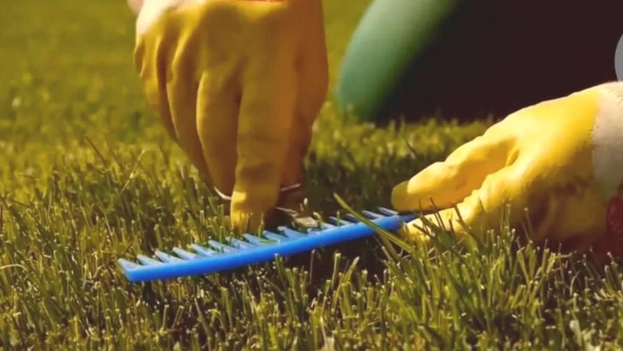 Pflege für den Garten: So wird der Rasen fit für den Sommer