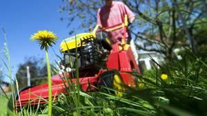 Ein Mann mäht den Rasen