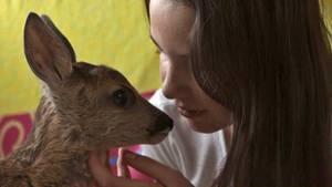 """Unfall überlebt: Für Rehkitz """"Hugo"""" ist die 12-jährige Hannah Schäfer die Ersatzmama geworden."""