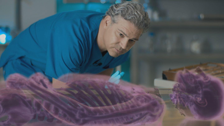 An einer dreidimensionalen Animation der Leiche auf der Basis der original CT-Scans demonstriert Professor Michael Tsokos die Verletzungen, die zum Tod geführt haben