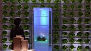 """Ein Kühlschrank wird auf der IFA in Berlin präsentiert. Die deutschen Innenminister wollen das """"Internet der Dinge"""" absichern."""