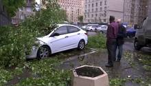 Moskau - Unwetter - Bäume