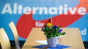 Der Landesverband Saar der AfD gerät immer wieder in die Schlagzeilen