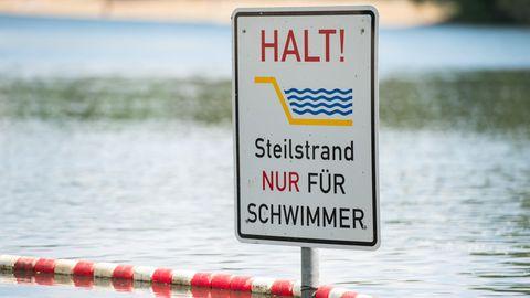 Ostfriesland: Es galt als ausgestorben: Junge fängt auf Borkum ein sehr seltenes Seepferdchen