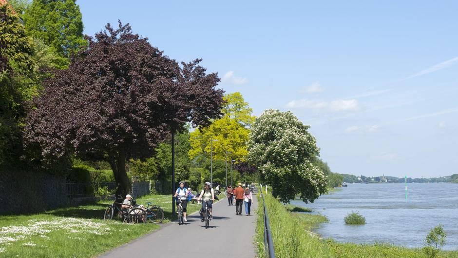 Das Rheinufer in Bonn