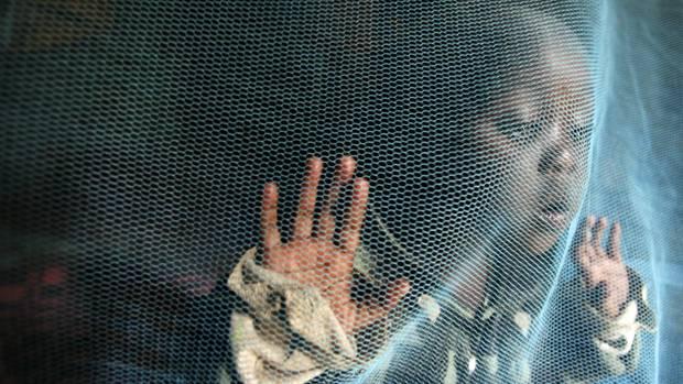 Moskitonetze sollen vor Malaria schützen