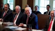 Donald Trump bei seiner ersten Kabinettssitzung