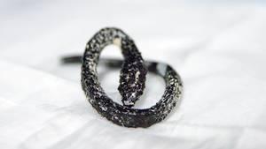 Skurriler Befund: Vor Jahrzehnten hatte ein Mann in Südamerika diese Schlange geschluckt - die dann in seinem Körper versteinerte