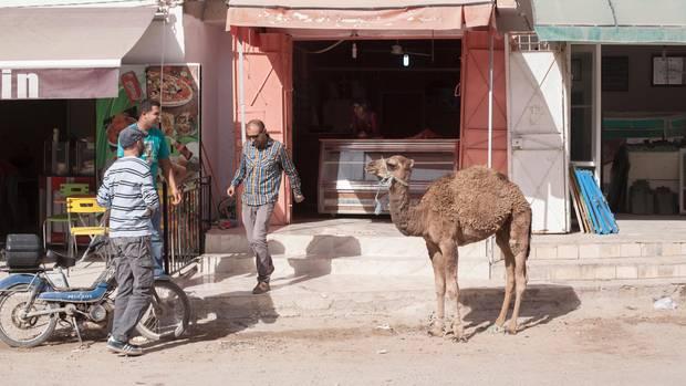 Ali Rebah in seiner Heimatstadt Kasserine