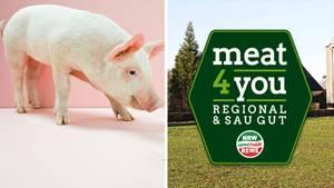 Schweinefleisch ohne Antibiotika – wie Rewe den Verbraucher täuscht