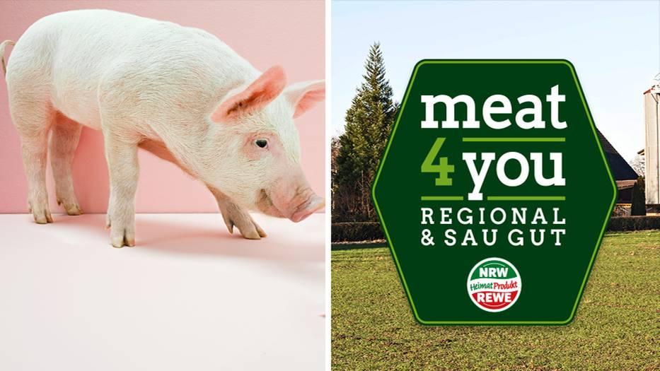 Schweinefleisch Ohne Antibiotika Wie Rewe Den Verbraucher Tauscht