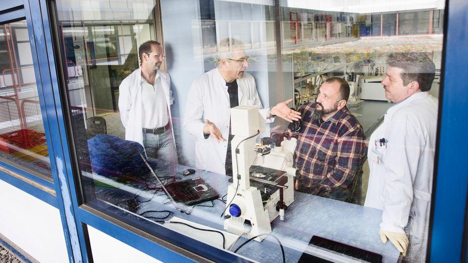 Im Labor zeigen die Experten dem Patienten Stefan Böhm im Mikroskop die Eier des tropischen Wurms, der seine starken Beschwerden verursacht hat