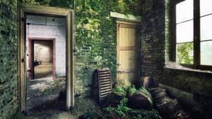 In diesen Hallen wurden einst Waren aus Glas gefertigt. Jetzt kriecht Moos über die feuchten Wände.