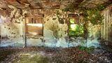 Efeu rankt sich durchs Fenster und nimmt das Mauerwerk eines alten Industriekomplexes in Beschlag.