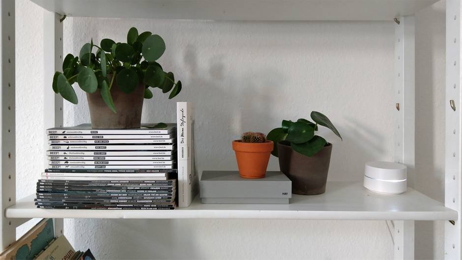 Google Wifi steht in einem weißen Regal zwischen Büchern und Pflanzen