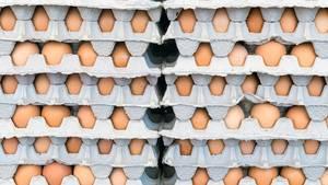 Eier sollte man natürlich nicht am Stück einfrieren, sondern im flüssigen Zustand. Verquirlen Sie Eier und frieren Sie sie in einem Plastikbeutel oder in einem Eiswürfelbehälter ein. Sie können Eigelb und Eiweiß auch getrennt voneinander einfrieren - perfekt zum Backen.