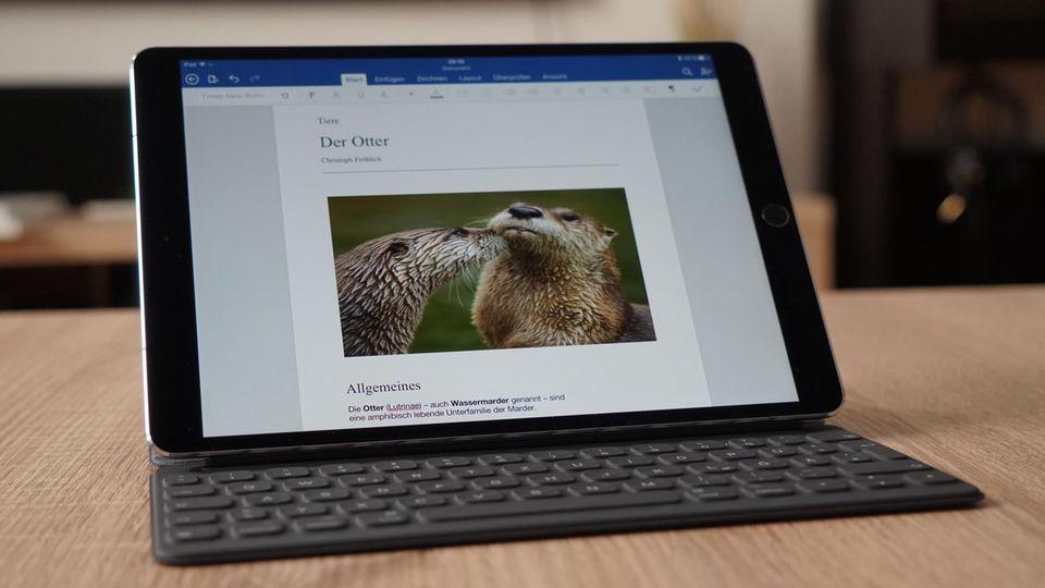 Mit der passenden Tastatur-Hülle kann man auch längere Texte auf dem Tablet schreiben.