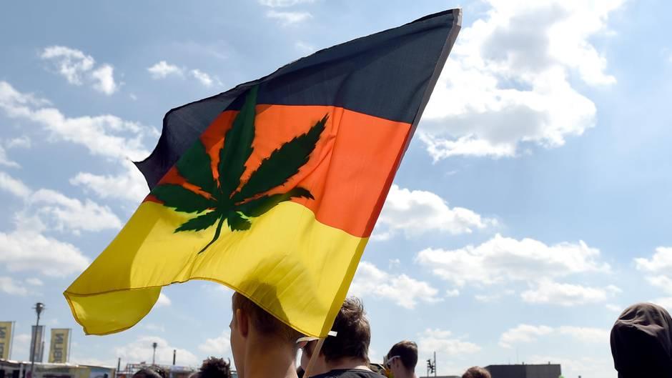 Cannabis auf Rezept: Der Staat vergibt erste Lizenzen für den Anbau