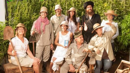 Joint Venture: Diese Farmer aus Israel arbeiten mit der Hanf AG zusammen