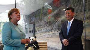 Berliner Zoo: Angela Merkel und Xi Jinping begrüßen Pandabären